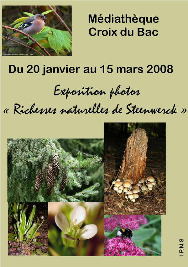 2008-1-richesses-steenwerck