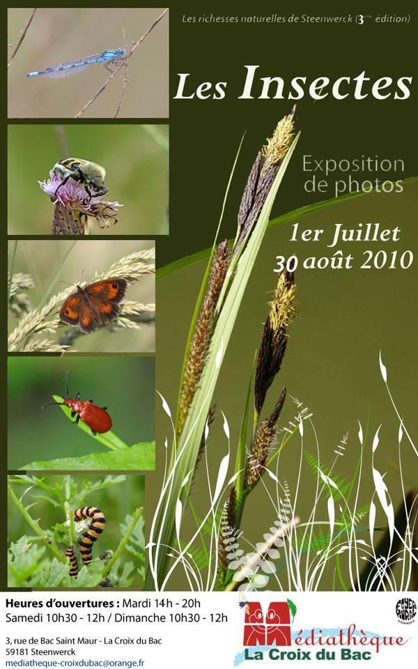 2010-04-affiche-insecte