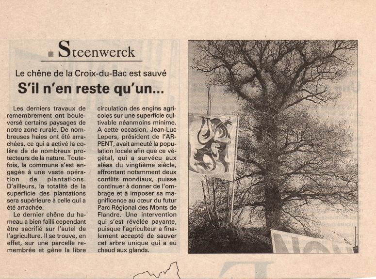 1996 chêne 3