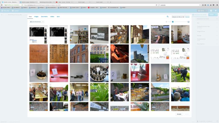 Voici la page media, vous pouvez selectionnez des photos déjà enregistré sur le blog, ou vous pouvez en inserer de nouvelles
