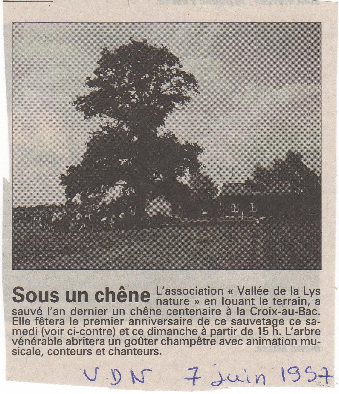 1997 chêne 2