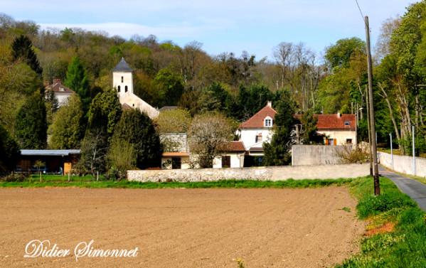 LUZANCY---Seine---Marne---Didier-Simonnet